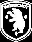koninklijke-beerschot-voetbalclub-antwerpen-logo-E906A78378-seeklogo